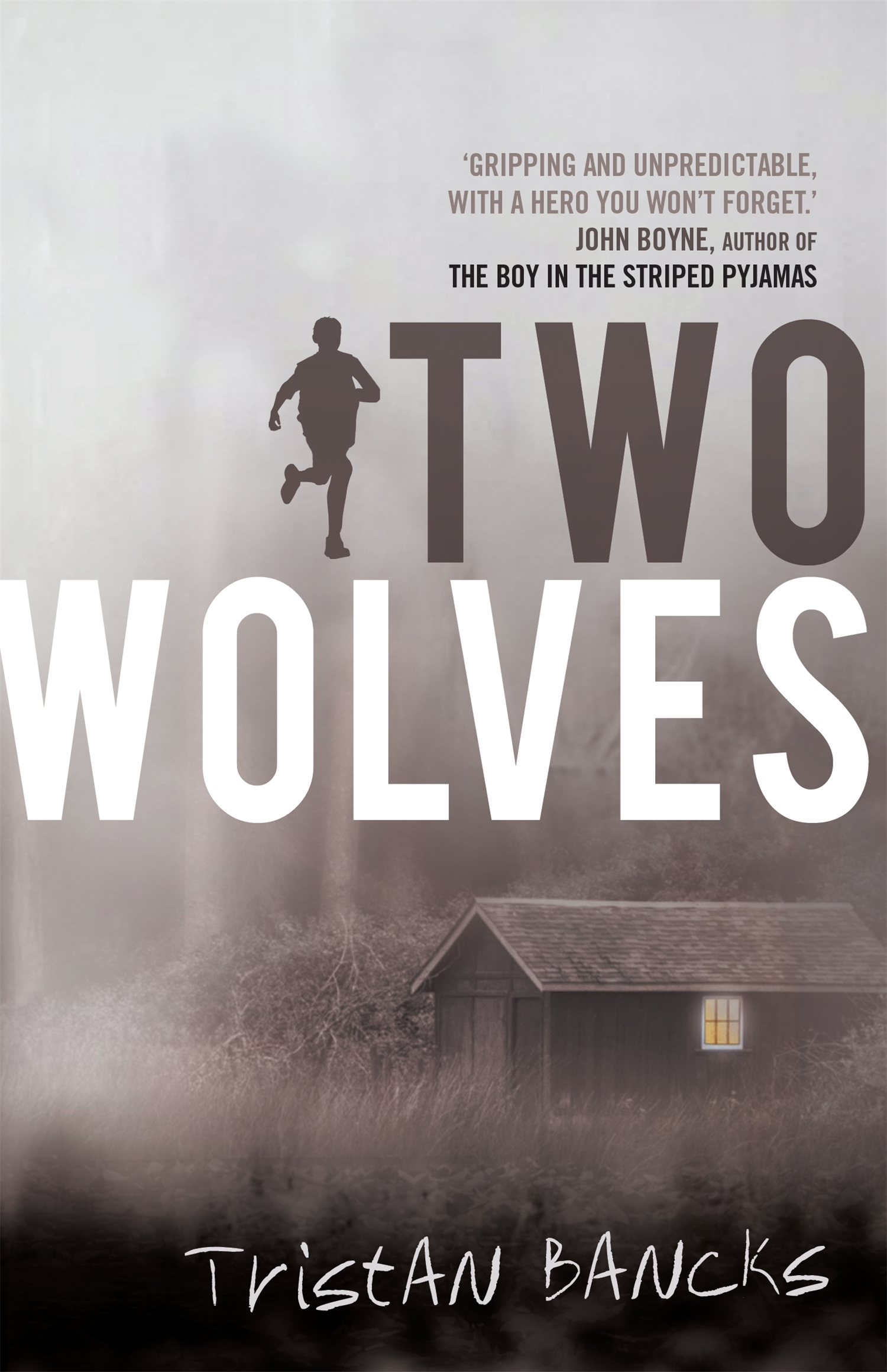 Old Wolf Book Cover : Two wolves bug in a book
